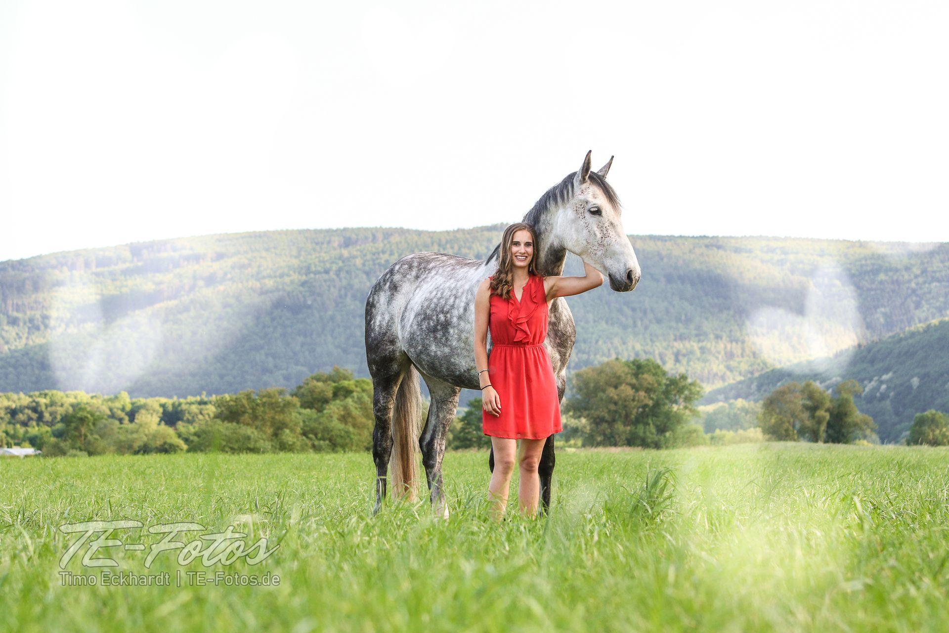 Tiershooting mit Pferd, Hund oder anderen Tieren