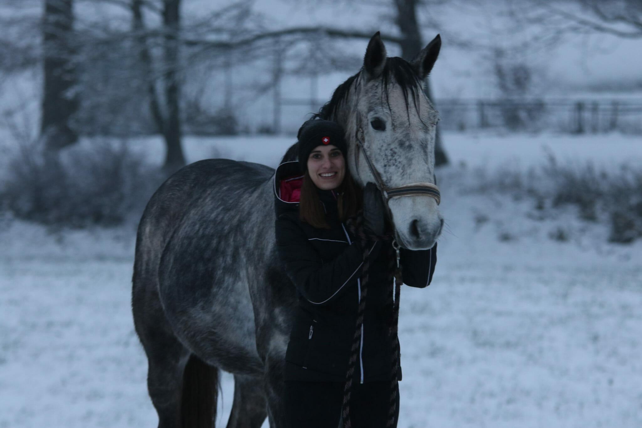 Pferdefotografie im Schnee vor der Bearbeitung