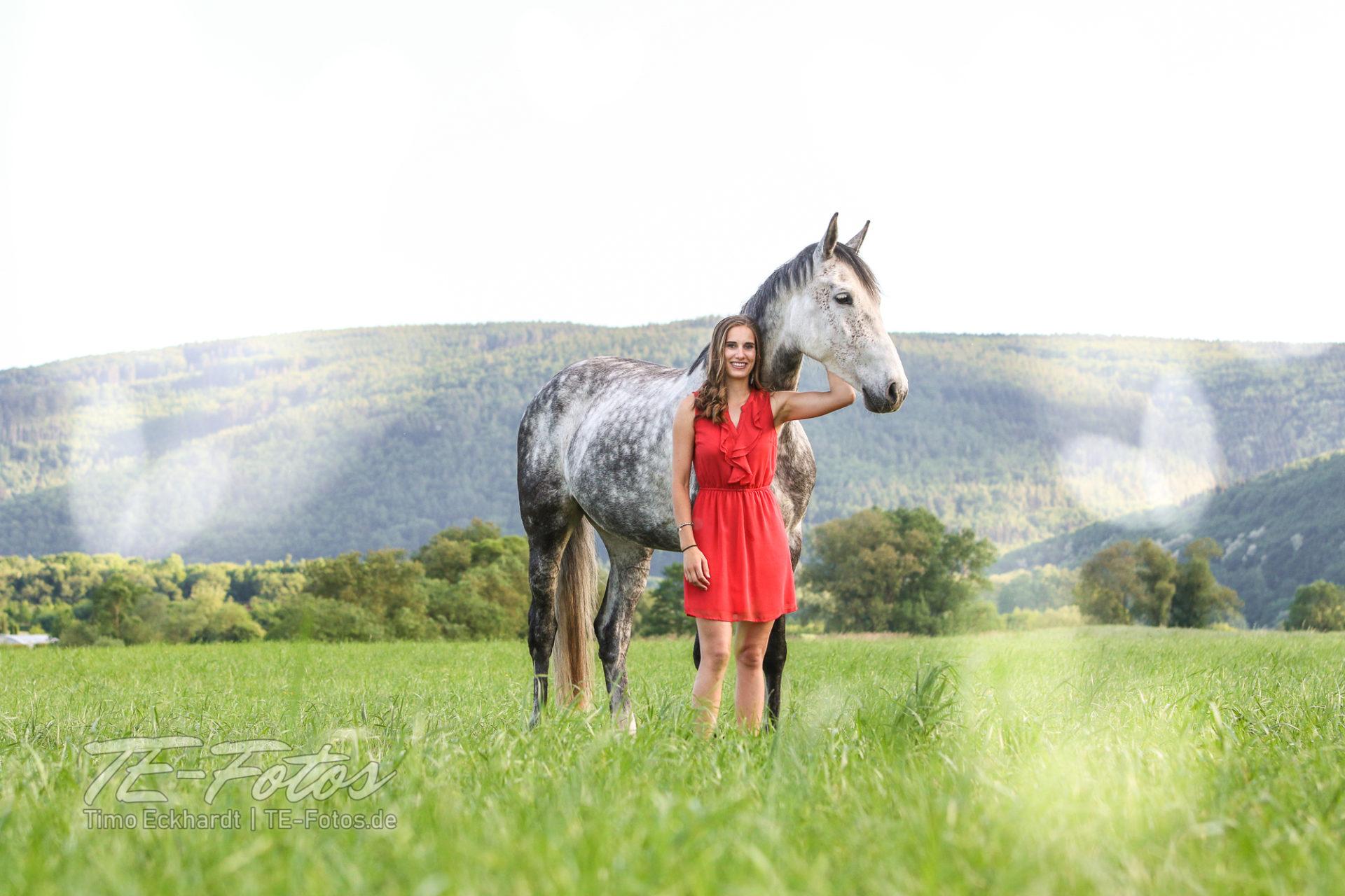 Pferdefotografie - Pferde Shooting im Weserbergland